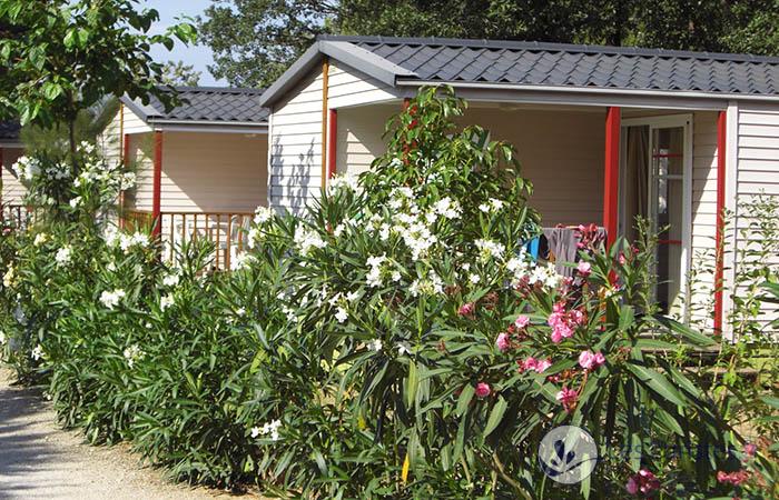 bungalow proche station thermale le boulou pour une cure thermale boulou le. Black Bedroom Furniture Sets. Home Design Ideas